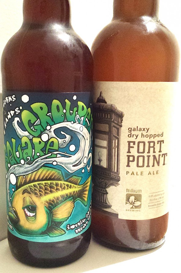 Square Grouper & Galaxy Dry-Hopped Fort Point