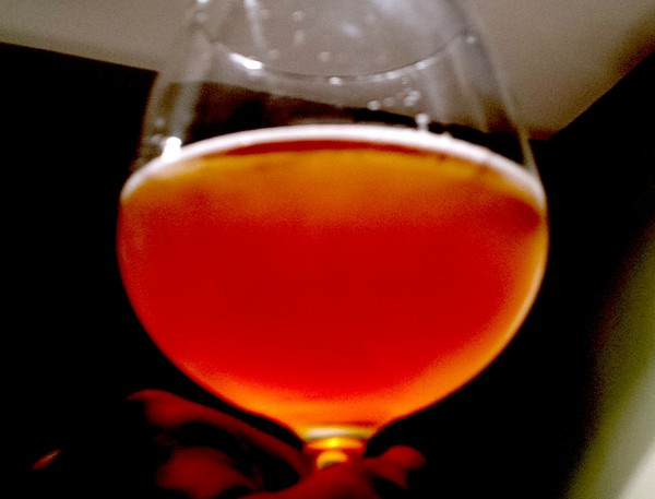 Hop Drop by Newburgh Brewing, New York